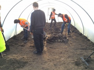 3 ways polytunnel