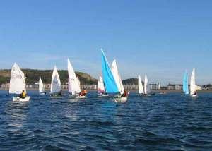 sailing-Club_racing-1